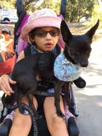A girl sits in a wheelchair while a small dog stands on her lap