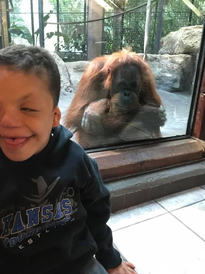 Devin smiles in front of a glass wall where a monkey is looking out.