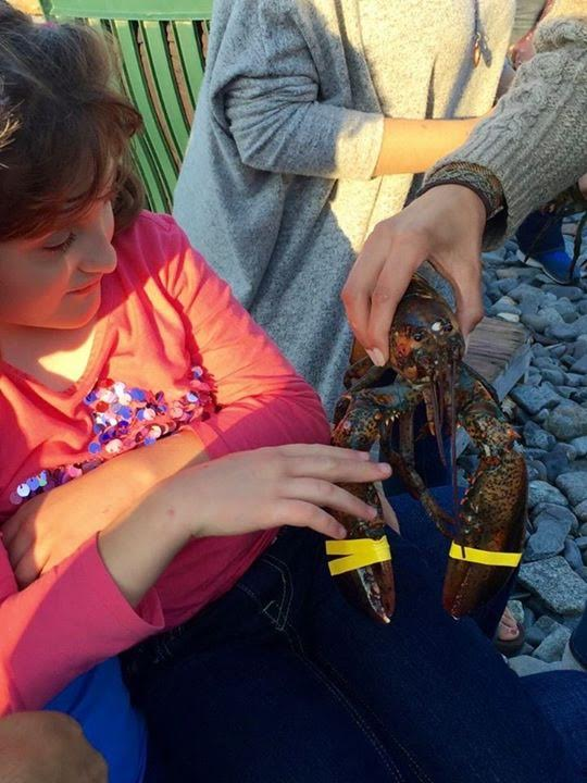 Grace reaches out to touch a live lobster.