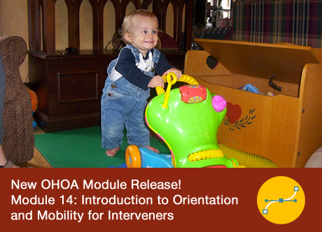 Module 14 - Introduction to Orientation and Mobility for Interveners